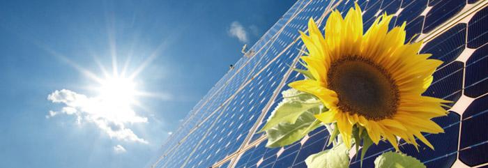 Cum poti opri accentuarea schimbarilor climatice? Afla acum solutia!
